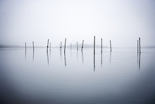 View Of Few Posts In The Water.