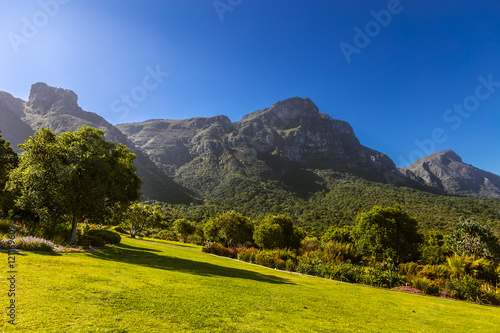 Poster Jaune South Africa. Cape Town. Kirstenbosch National Botanical Garden. Panoramic view Table Mountain slopes from Castle Rock (peak in the left) to Devil's Peak