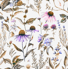 FototapetaHand-drawn watercolor seamless botanical pattern with different plants. Repeated natural background with meadow and medical plants: echinacea, coffe, lavender etc.