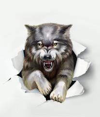 Panel Szklany Podświetlane Zwierzęta wolf