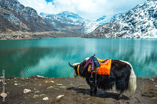 Tuinposter India Tsangmo Lake in Sikkim, India