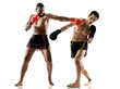 kickboxing kickboxer boxing men isolated