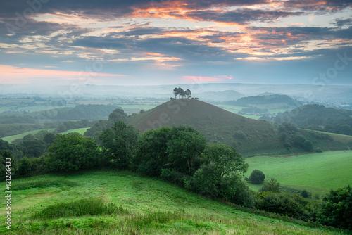 Fotografiet Colmer's Hill in Dorset