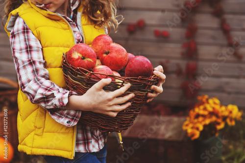 Fotomural happy child girl picking fresh apples on the farm