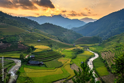 Garden Poster Rice fields Rice field on Terraces panoramic hillside with rice farming on m