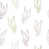 Lawenda kwiat szkic graficzny wzór bezszwowe wektor ilustracja - 121322201