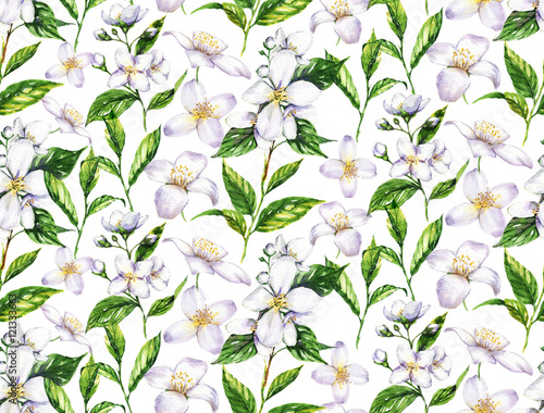 Fotografie, Obraz  Hand-drawn watercolor seamless pattern with jasmine flowers and tea leaves on the white background