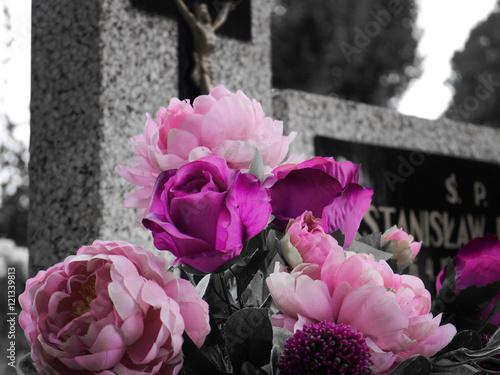 Staande foto Kinderkamer Pink Flowers on the Grave Cemetery Background