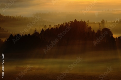 Fototapety, obrazy: Morning with sun. Cold misty foggy morning in a fall valley of Bohemian Switzerland park. Hills with fog, landscape of Czech Republic, sun beam in the landscape Ceske Svycarsko. Forest with sun rays.