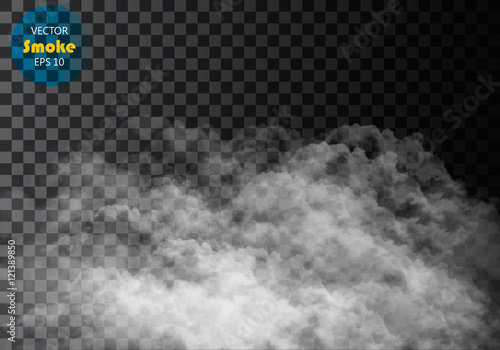 Garden Poster Smoke Fog or smoke isolated transparent special effect. White vector cloudiness, mist or smog background. Vector illustration