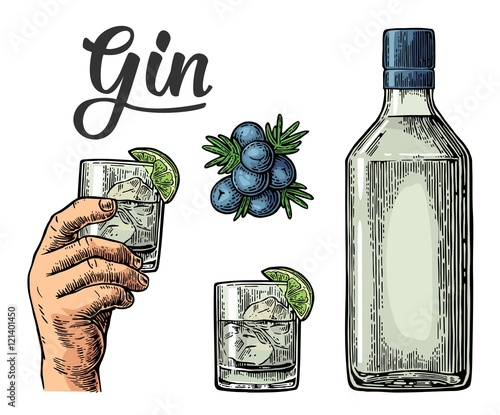 Photo Glass and bottle of gin and branch of Juniper with berries