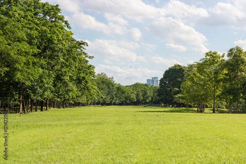 Fotografija  Public Park on fine weather.