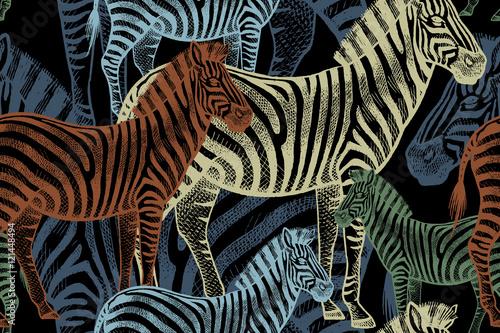 seamless-pattern-with-african-animals-zebra