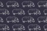 Bezszwowy wzór z Afrykańskim hipopotamem. - 121448897