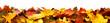 Leinwandbild Motiv Bunte Blätter als Herbst Bordüre, isoliert auf reinem Weiß