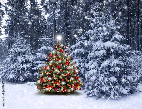 weihnachtsbaum aus wald neujahrsblog 2020. Black Bedroom Furniture Sets. Home Design Ideas