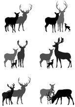 Set Of Silhouettes Of Deer Fam...