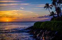 Coconut Palms, Lava Shoreline, Maui Sunset