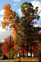 Autumn Suburban Scene In New England