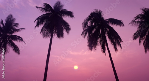 Aluminium Prints Candy pink Silhouette of Tropical Coconut Trees during Sunset or Sunrise at the Island, Romantic Scenery