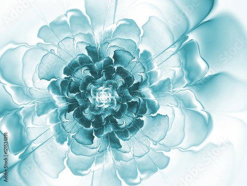 Fototapety, obrazy: Abstract fractal flowers. Image toned in blue.