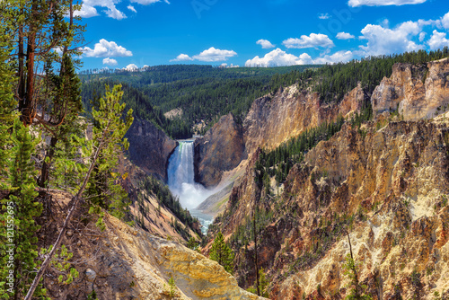 Wall Murals Natural Park Falls in Grand Canyon of the Yellowstone National Park, Wyoming