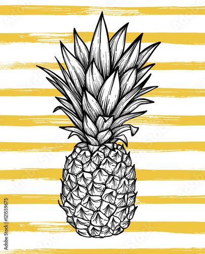 reka-rysujaca-wektorowa-ilustracja-ananas