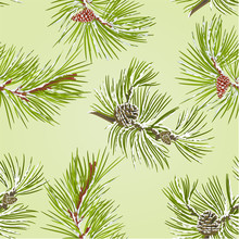 Seamless Texture Two Pine Branches With Pine Cones With Snow Vector Illustration