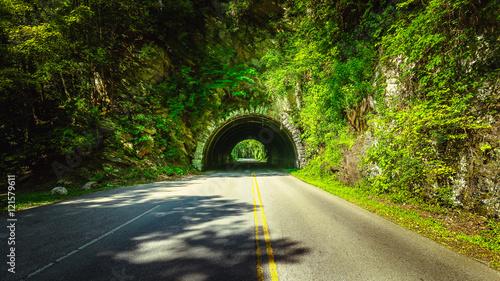 Obraz na płótnie On the way to Cades Cove, Great Smoky Mountains