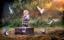 Little Pigeon Fancier. Boy Pla...