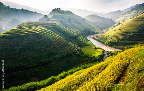 Garden Poster Rice fields Rice fields on terraced of Mu Cang Chai, YenBai, Vietnam. Rice fields prepare the harvest at Northwest Vietnam.