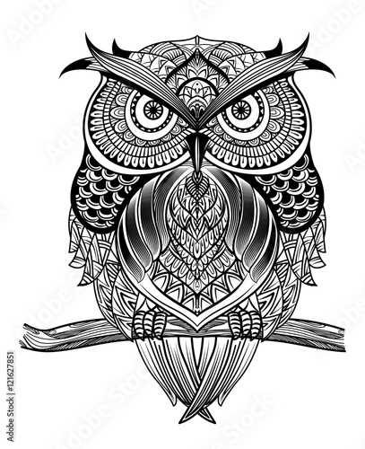 Poster Uilen cartoon Vector hand drawn Owl sitting on branch. Black and white zentang