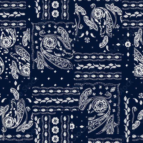 Fotografie, Obraz Hand drawn paisley pattern
