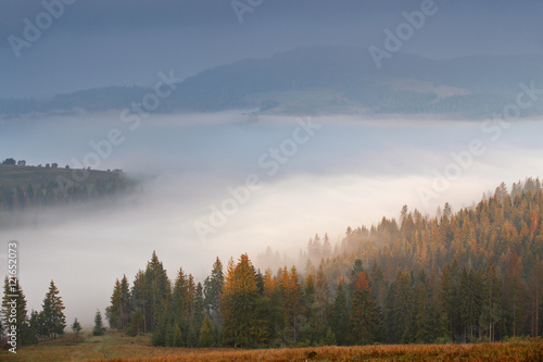 Poster Morning with fog Autumn September foggy morning in mountains