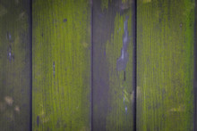 Wooden Plank Covered By Moss For Texture Background