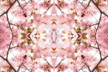 Kaleidoscopic Pattern Of Pink ...