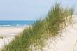 Natur pur im Urlaub am Meer