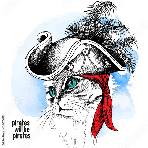 Tuinposter Hand getrokken schets van dieren Image cat portrait in a pirate hat and bandana on blue background. Vector illustration.