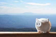 Piggy Bank On Nature Background. Soft Focus
