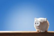 Piggy Bank On Blur Background....