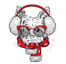 Cute Puppy In Earmuffs And A S...