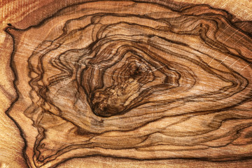 FototapetaClose up of olive wood