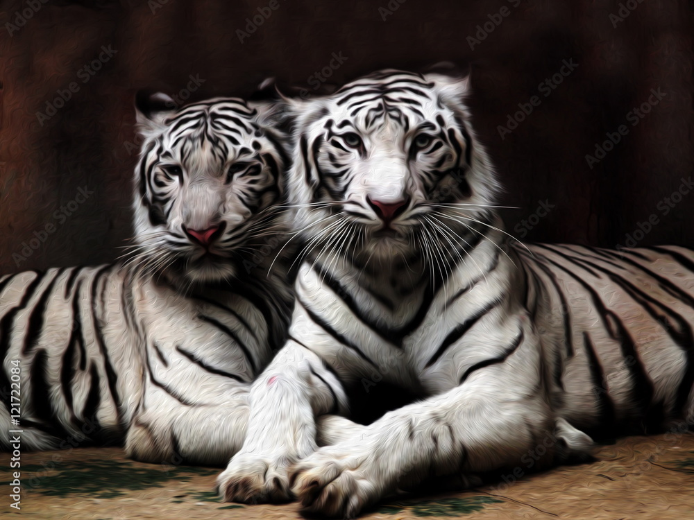 Oil painting White Tiger / photo effect  Oil painting