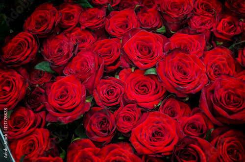 red rose flowers #121728628
