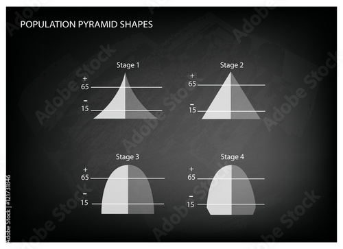 Fototapeta Four Types of Population Pyramids on Chalkboard Background obraz na płótnie
