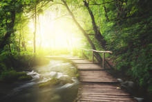 Wooden Path Across River In Dark Green Forest