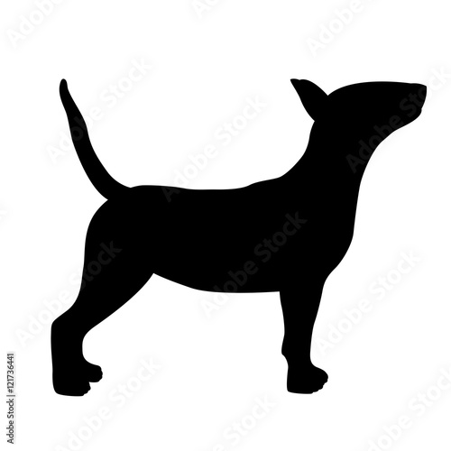 Canvas-taulu dog bull terrier vector illustration black silhouette