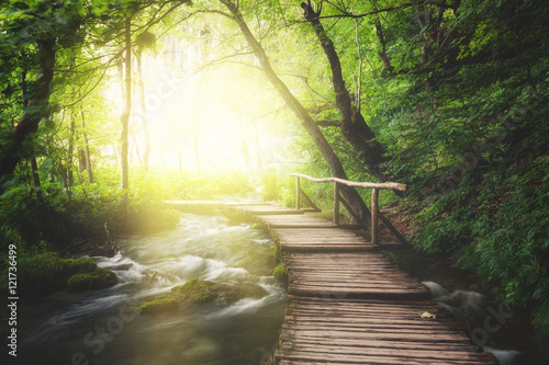 Stickers pour porte Route dans la forêt Wooden path across river in dark green forest