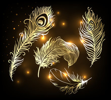 Shiny Gold Feather Over Dark Background. Concept For Temporary Tattoo