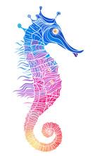 Rainbow Seahorse, Decorative Geometric Vector Illustration